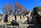 1 Day Beijing Bus Tours To Mutianyu Great Wall, Ming Tomb, Jade Shop and Silk Shop